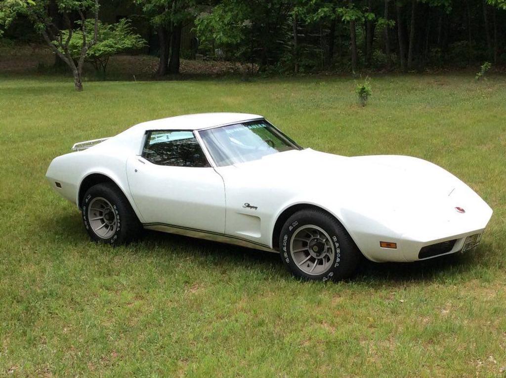 1974 corvette for sale michigan 1974 corvette t top corvette for sale in michigan. Black Bedroom Furniture Sets. Home Design Ideas