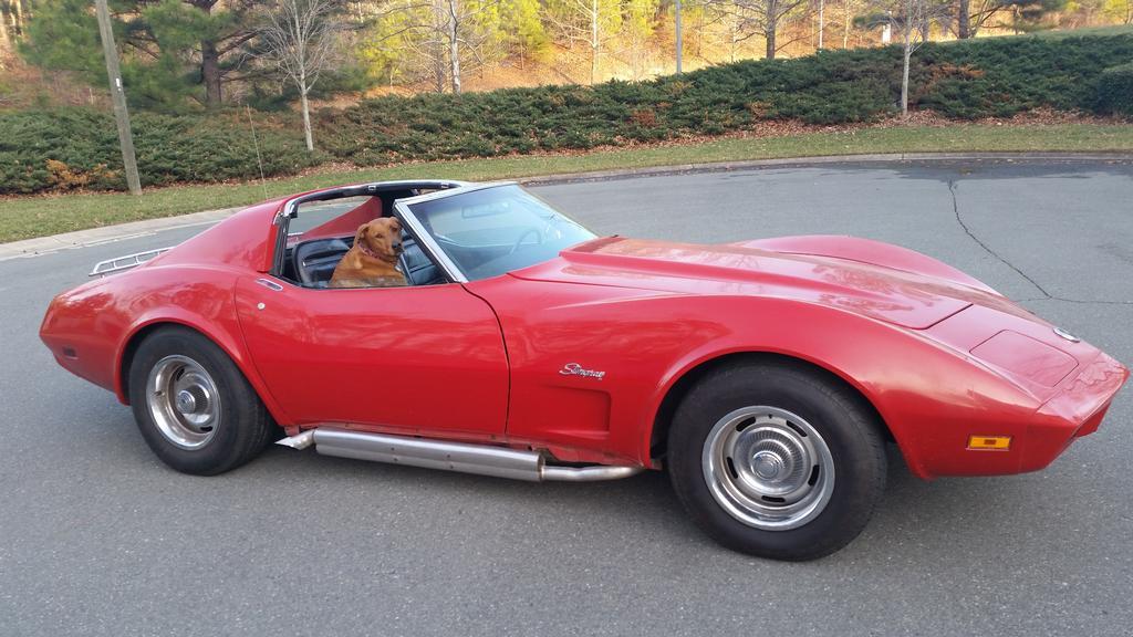 1974 corvette for sale north carolina 1974 corvette t top corvette for sale in north carolina. Black Bedroom Furniture Sets. Home Design Ideas