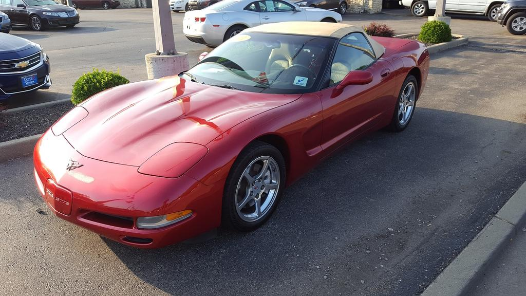 2001 corvette for sale ohio 2001 corvette convertible corvette for sale in ohio. Black Bedroom Furniture Sets. Home Design Ideas